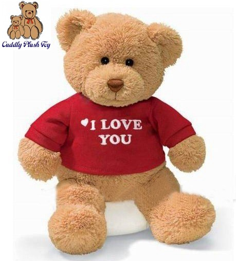 Stuffed Dressing Teddy Bear Love U Bear