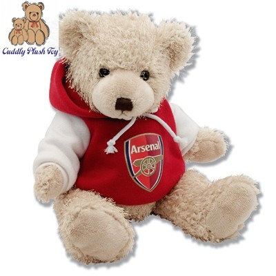 Novelty Dressing Plush Teddy Bear With T- Shirt