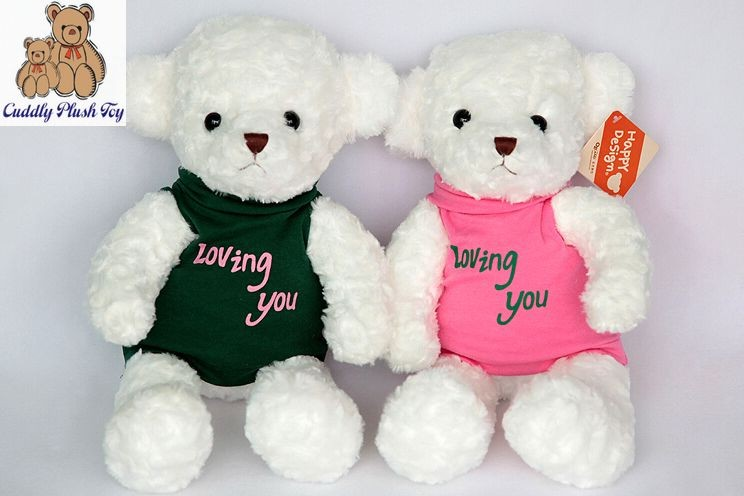 Valentine Plush Teddy Bear